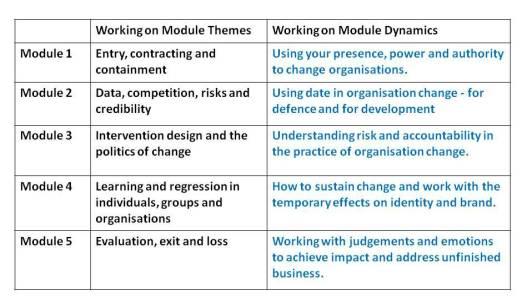Consultant development programme module design