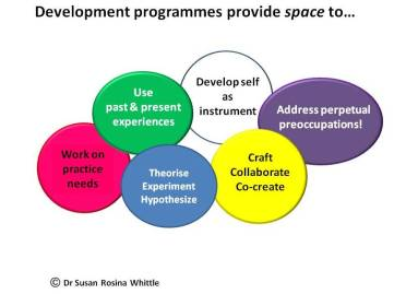 Consultant development programmes offer space to
